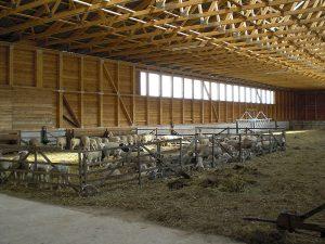 Hallenbau mit Betonboden
